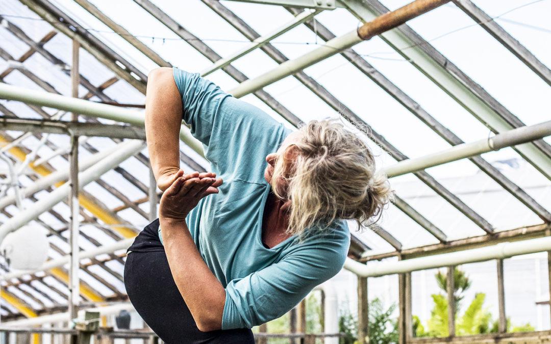 Online yoga på zoom